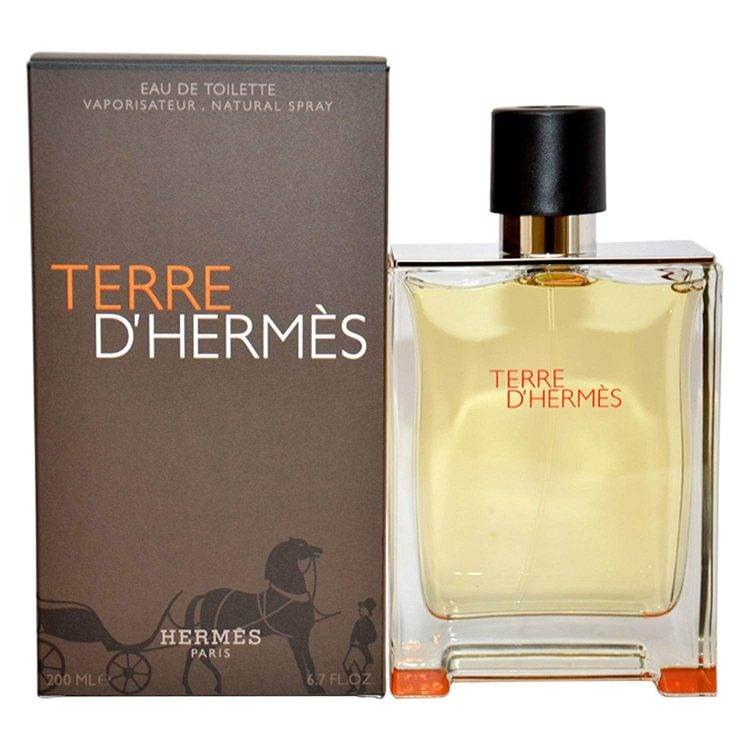 Hermes Terre D' Parfum Spray for Men
