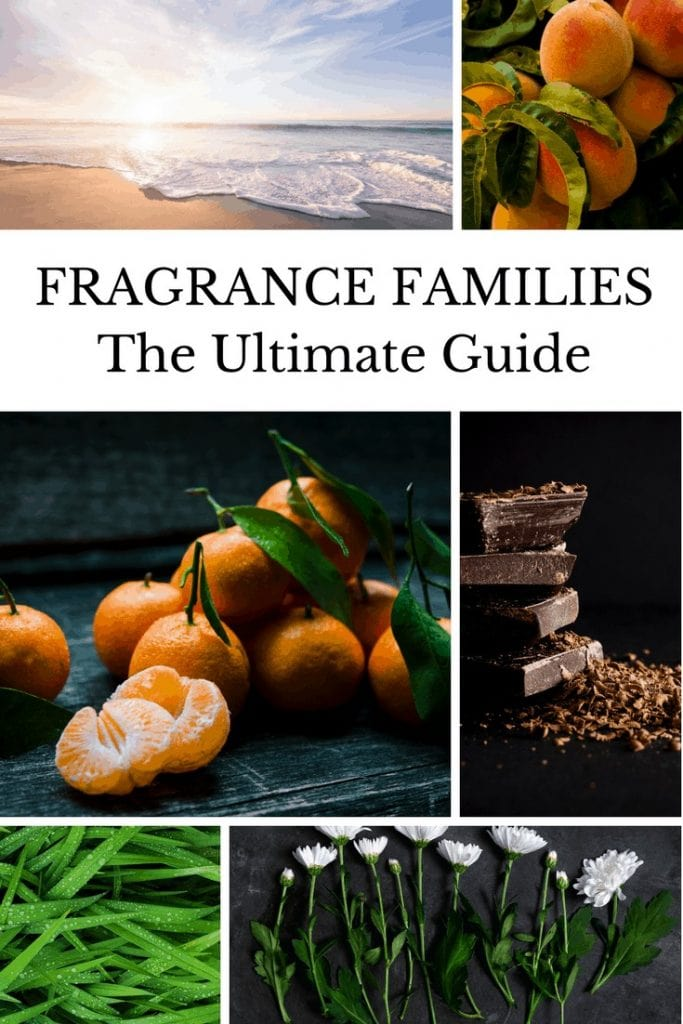 Traditional and Modern Fragrance Families