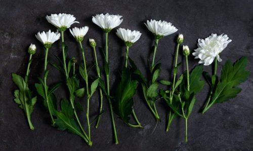 Best Floral Colognes for Men