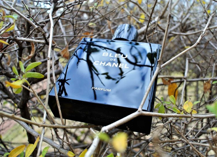 Best Men's Colognes for Everyday and Any Occasion