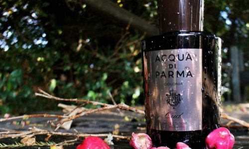 Acqua Di Parma Oud Cologne Review