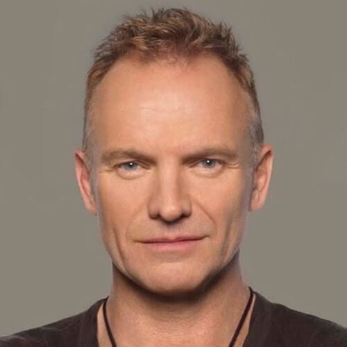 Headshot of Sting